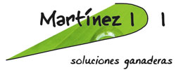 Martinez IDI